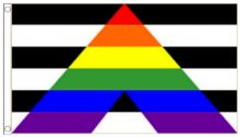 Straight Ally LGBT & Straight Alliance 5'x3' Flag